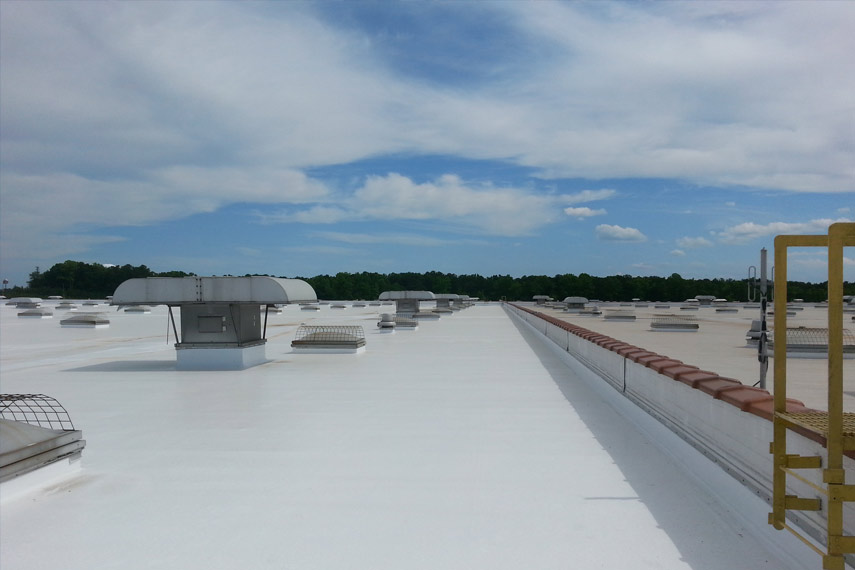 Slopping Roof & Terraces | Polymeric Membrane Coating Paint / Liquid Waterproofing Membrane-Manufacturer Supplier | Protexion